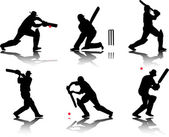 Cricket players