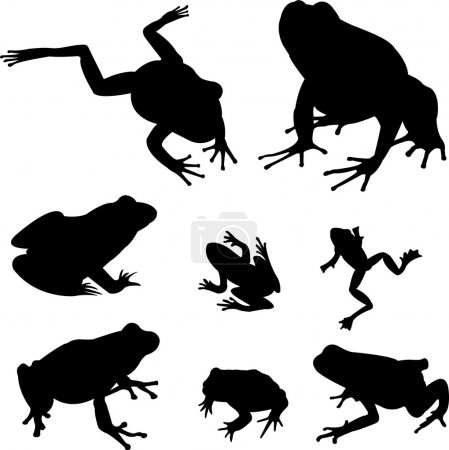 Frogs silhouettes collection - vector...