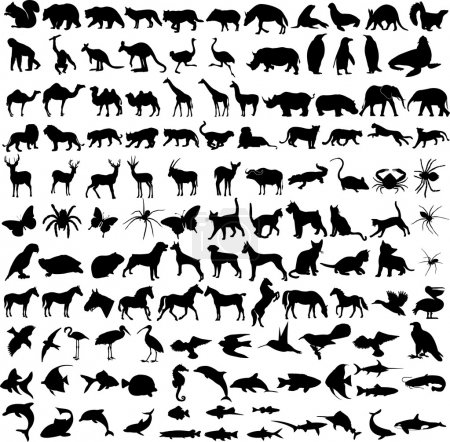 Illustration for 125 high quality different animals silhouettes - vector - Royalty Free Image