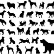 5 different dogs silhouettes - vector...