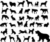 5 different dogs silhouettes - vector