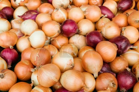 Sweet Onions at the Market