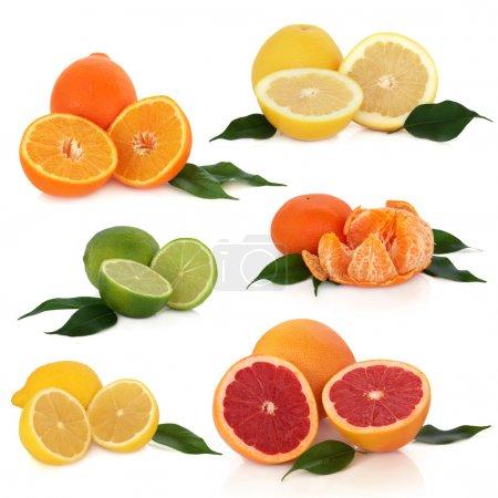 Photo pour Collection d'agrumes de citron, citron vert, orange, mandarine et pamplemousse avec des brins de feuilles, isolés sur fond blanc. - image libre de droit