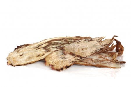 Angelica Herb Root