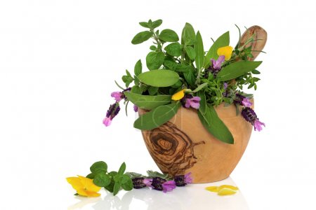 Healing Herbs and Flowers