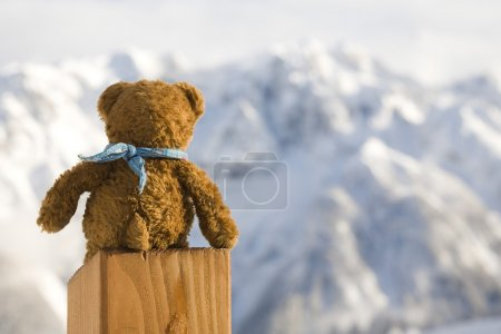 Photo pour Paysage hivernal - photo prise en dolomites italiennes - image libre de droit