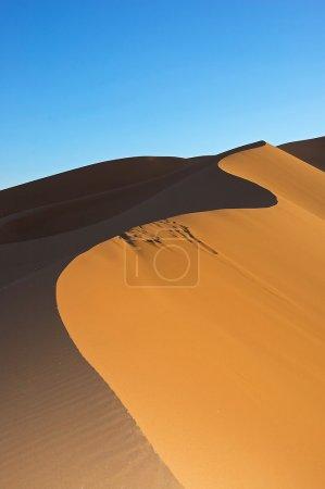 Dune in Sahara desert