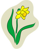 Vector illustration of a Narcissus logo or label isolated