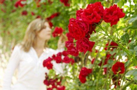 Woman in garden of roses