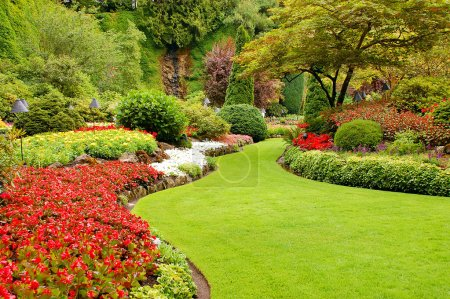 Colorful lush garden in springtime