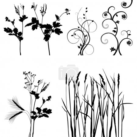 Illustration for Collection for designers, plant vector - Royalty Free Image