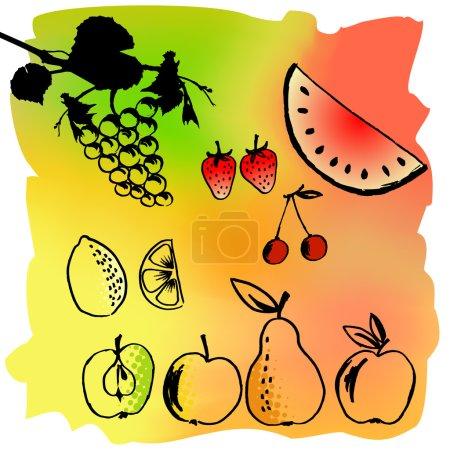 Illustration pour Jeu d'illustrations vectorielles d'un fruit différent - image libre de droit
