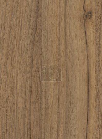 Walnut lyon wood texture