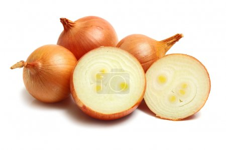 Photo for Healthy white vegetable onion isolated white on background - Royalty Free Image