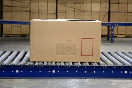 Photo for Carton on conveyor rollers in a warehouse - Royalty Free Image