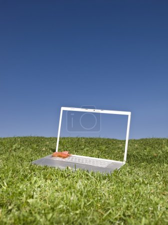 Laptop outdoors on a green field