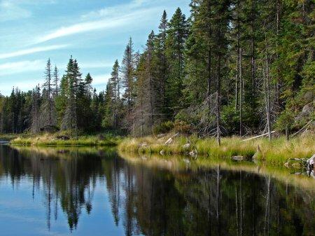 Photo pour Superbe lac du Nord aux eaux bleu profond calmes reflétant le ciel et la forêt de conifères. - image libre de droit