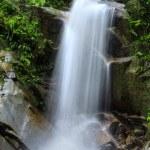 Natural waterfall at tropical rainforest Malaysia ...