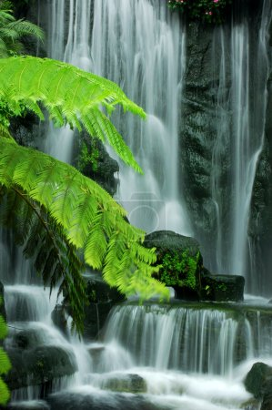 Photo pour Chutes jardin zen japonais d'obturation lente. - image libre de droit