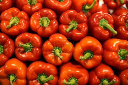 Red sweet pepper on background