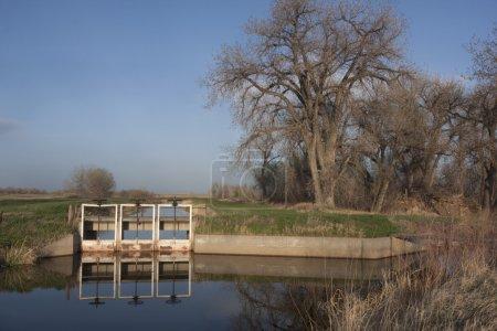 Photo pour Fossés d'irrigation avec de l'eau courante dans le nord du Colorado, trois portes d'entrée, équipement de levage et passerelle, printemps avec herbe verte et peupliers - image libre de droit