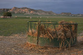 Cattle feeder with corn straw in pasture