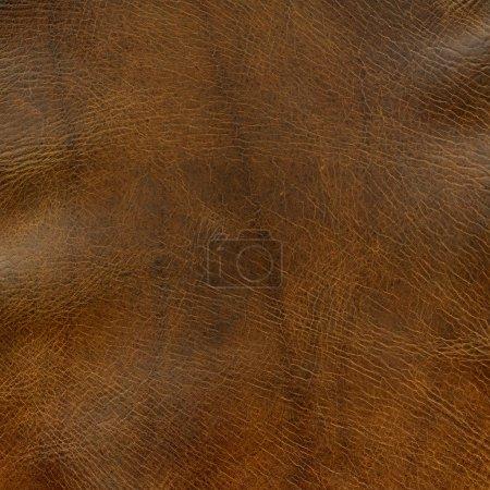 Photo pour Fond en détresse en cuir marron avec quelques rides - un sommet de l'ancienne selle de cheval - image libre de droit