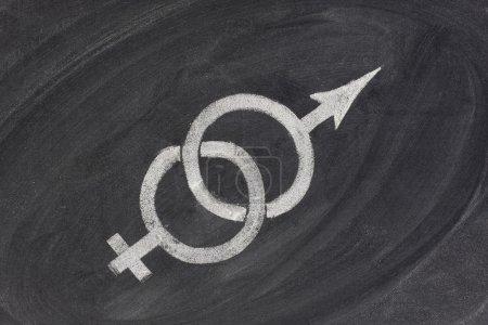 Photo pour Symboles de genre entrelacés tirant dans des directions opposées esquissés avec de la craie blanche sur le tableau noir - concept de problèmes dans le mariage et les relations, équation de genre - image libre de droit