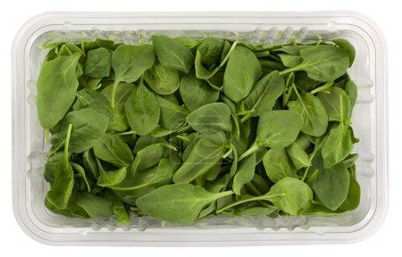 Photo pour Épinards verts frais dans une boîte d'épicerie en plastique transparent isolé sur blanc avec chemin de coupe - image libre de droit