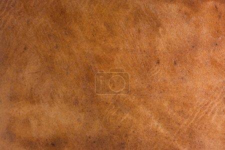 Photo pour Résumé en cuir marron d'une vieille valise avec les rayures, les marques et les taches - image libre de droit