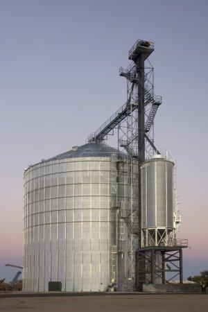 Grain silo and elevator