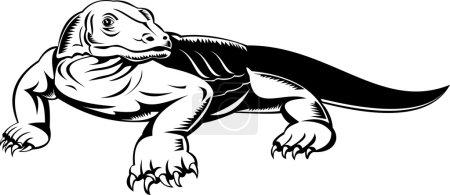 Komodo dragon monitor lizard