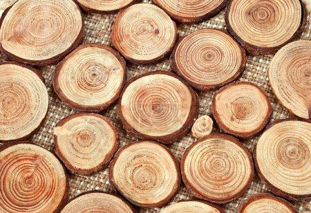 Foto de Círculos anuales de madera - trozos de madera con anillos anuales - Imagen libre de derechos