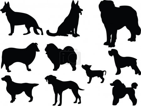 Dogs silhouette collection