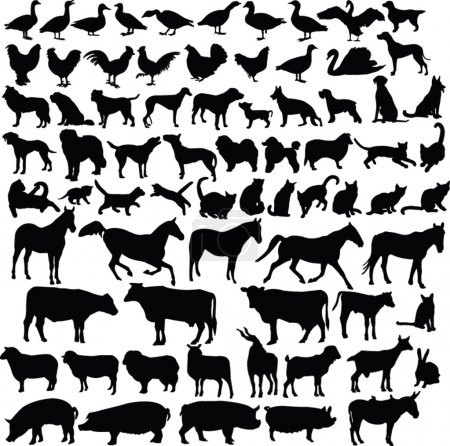 Farm animals silhouette collection - vector