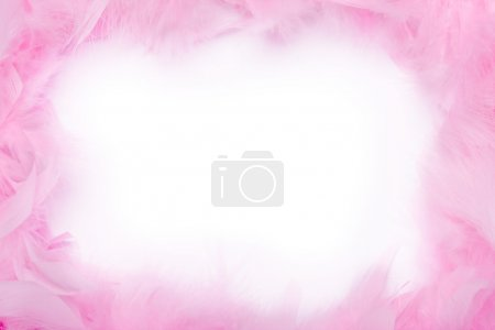 Feather boa frame