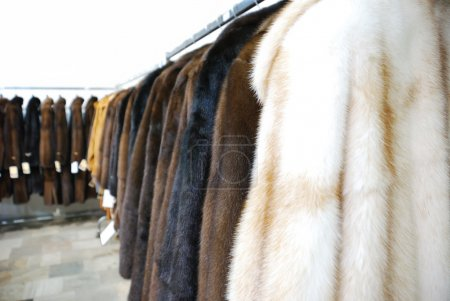 Photo for Row of fur coat in shop, Greece - Royalty Free Image