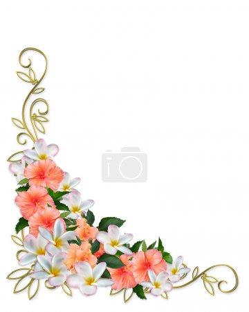 Photo pour Hibiscus, plumeria, bordure florale design d'angle pour carte, fête, mariage, invitation anniversaire ou fond avec espace de copie, or, accents , - image libre de droit