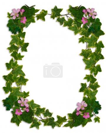 Foto de Frontera de hiedra de la boda, invitación, Pascua, plantilla con floración trébol, espacio de copia, fondo. - Imagen libre de derechos