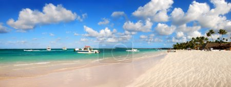 Tropical white sand in exotic beach