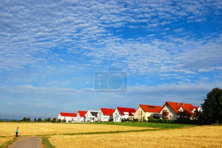 Tranquil landscape - hay fields and hous