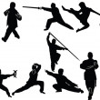 Kungfu collection - vector...
