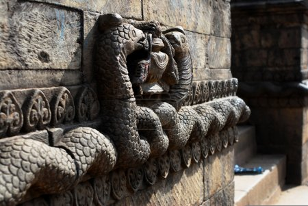 Snake god sculpture relief of nepal