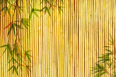 Light golden bamboo Background