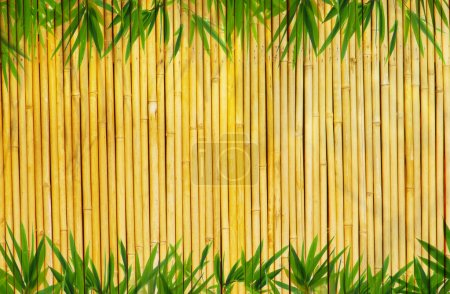 Photo for Light golden bamboo Background - Royalty Free Image