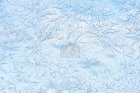 Freeze pattern
