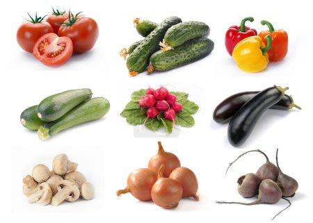 Photo pour Ensemble de légumes situé sur un fond blanc - image libre de droit