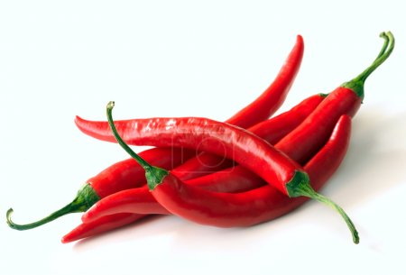 Photo for Red hot chili pepper on a white background - Royalty Free Image