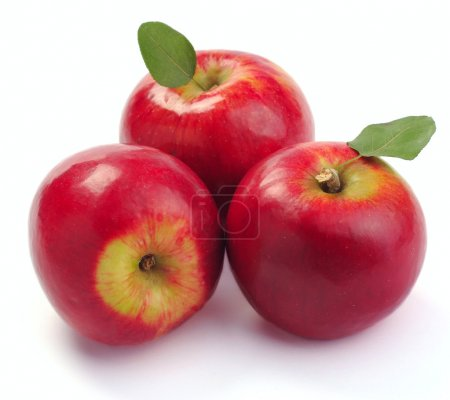 Photo for Red apple on a white background - Royalty Free Image