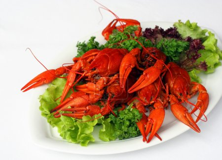 Boiled river lobsters